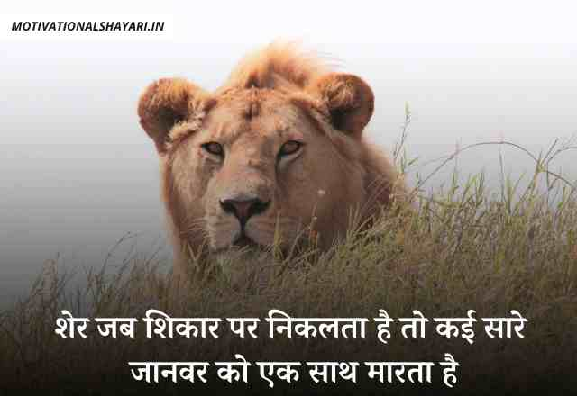 Lion Quotes In Hindi