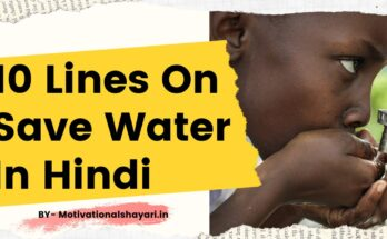 10 Lines On Save Water In Hindi